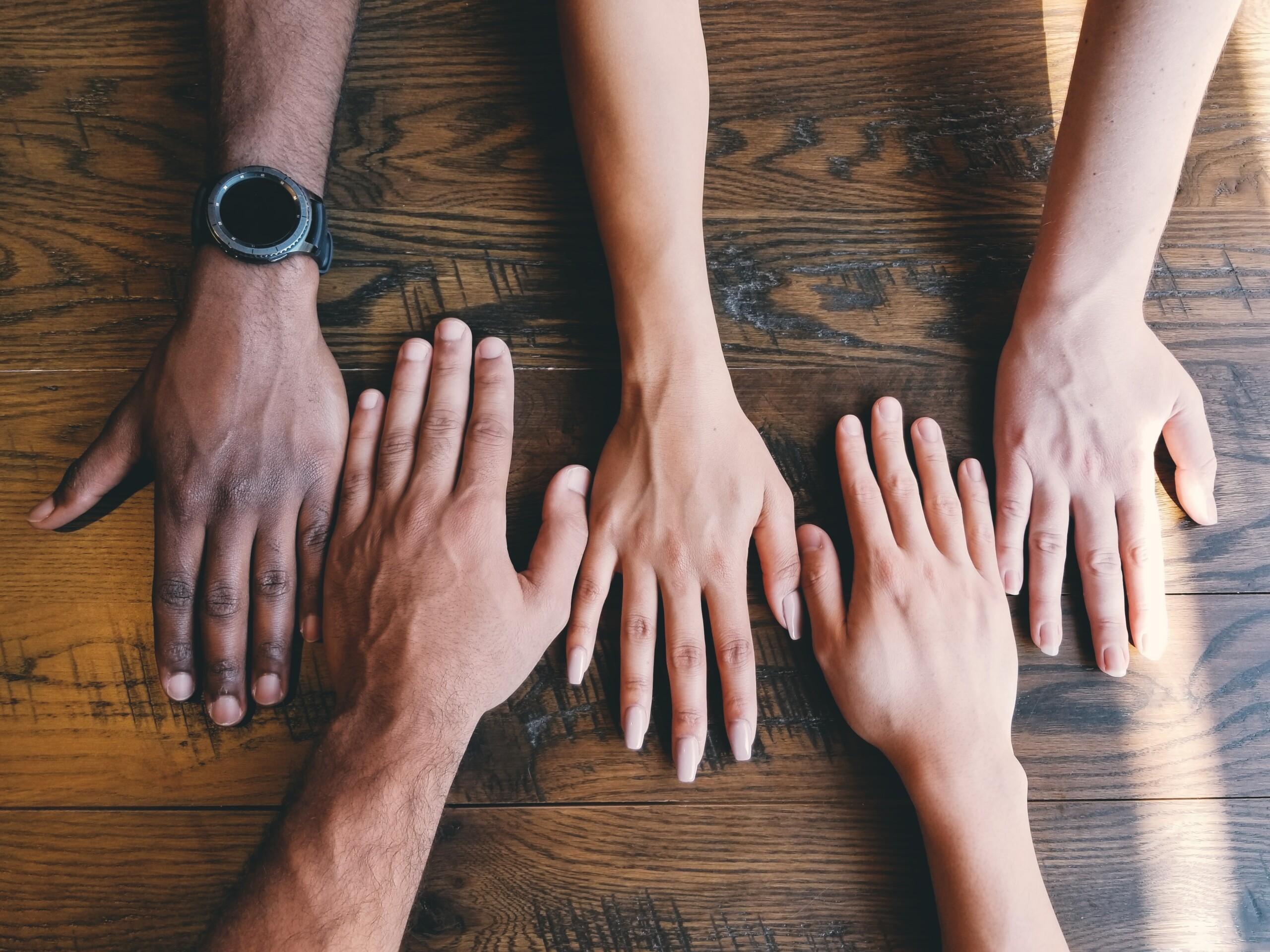 Understanding the Value of Diversity